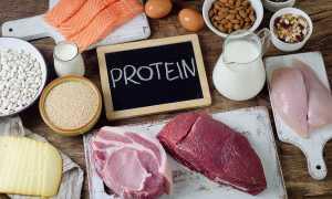 Диета Дюкана или белковая диета: в чем отличия и особенности данных диет?