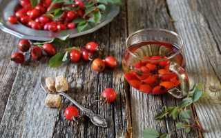 Полезные свойства шиповника: лучшие домашние рецепты, витамины