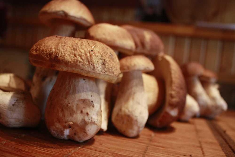 грибы на деревянном столе