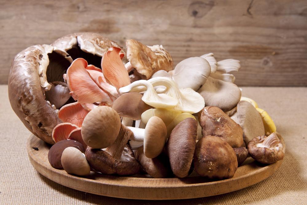 чем можно заменить грибы в диете